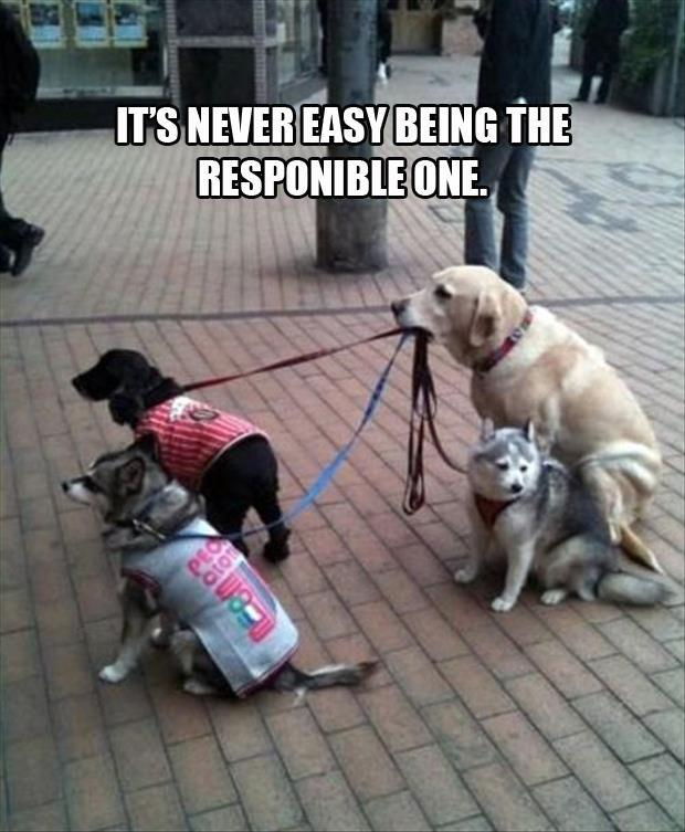 Being the Responsible One.jpg